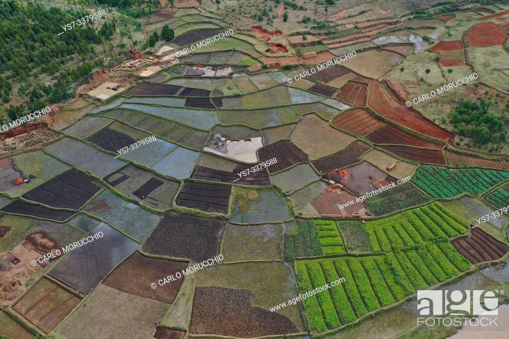 Stock Photo: Vegetable cultivation and brick making on the rice fields, National Route RN7 between Antsirabe and Antananarivo, Madagascar.