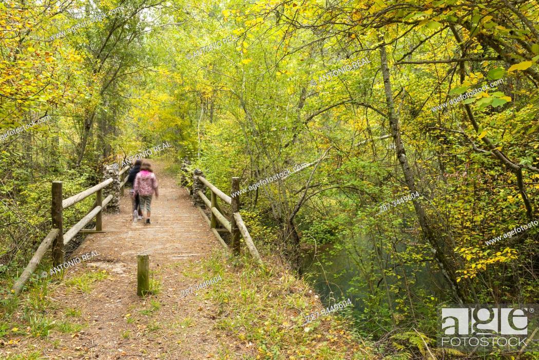 Stock Photo: Autumn. Monumento Natural de la Hoz de Beteta. Parque Natural de la Serranía de Cuenca, Cuenca province, Spain.