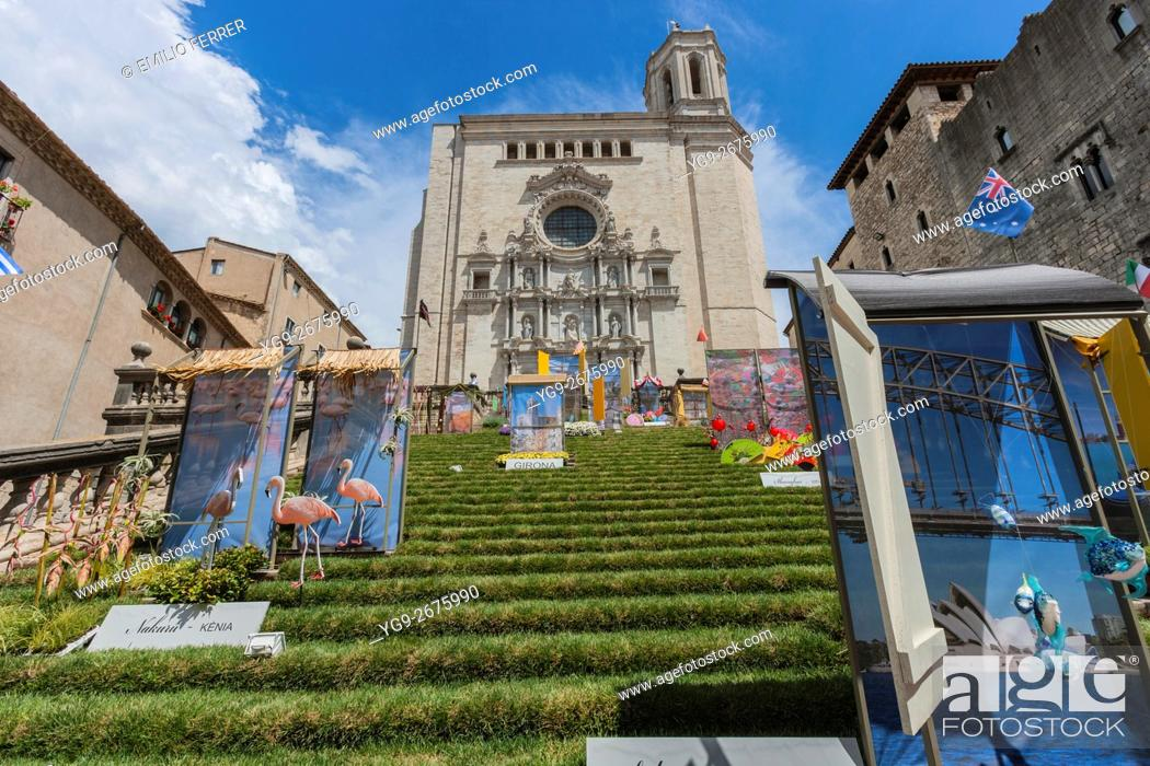 Stock Photo: CATHEDRAL AND FLORAL ART EXHIBITION IN GIRONA. CATALONIA. SPAIN.