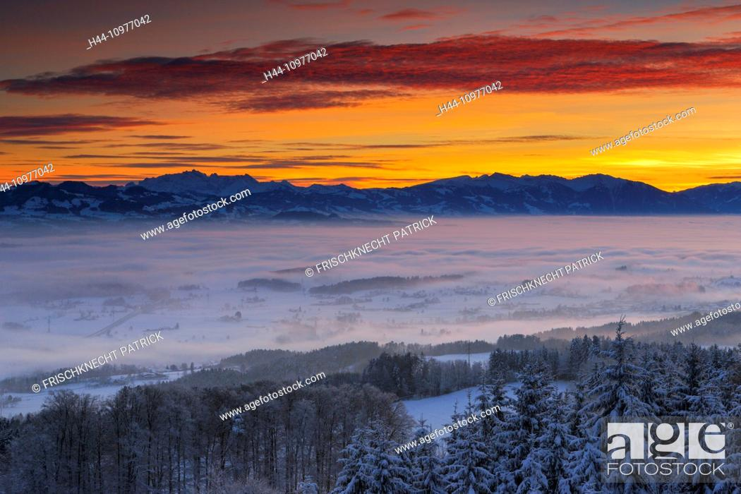Stock Photo: Alps, Alpine panorama, view, mountain, mountains, mountain panorama, trees, plain, Glarus Alps, mornings, Morning-red, Mürtschenstock, nature, fog, fog patches.
