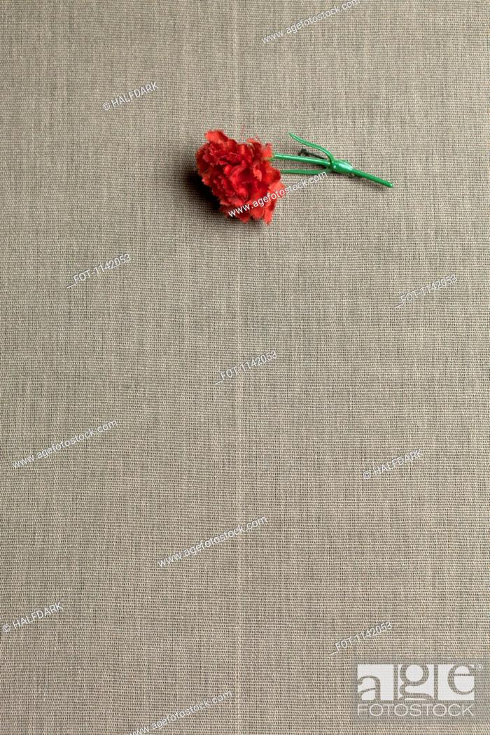 Stock Photo: A red carnation on linen.