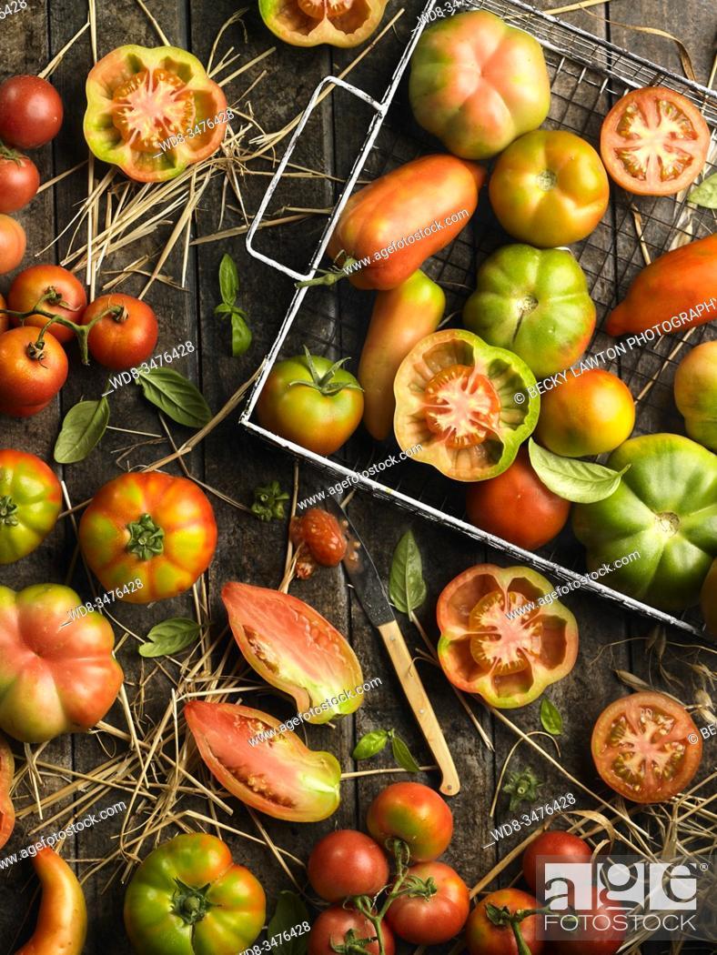 Stock Photo: Tomates diversos.