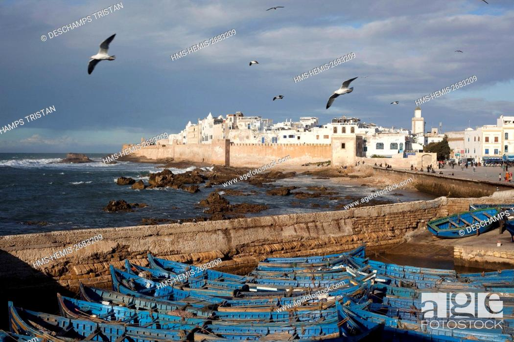 Stock Photo: Morocco, Essaouira, listed as World Heritage by UNESCO, fishing , old medina.