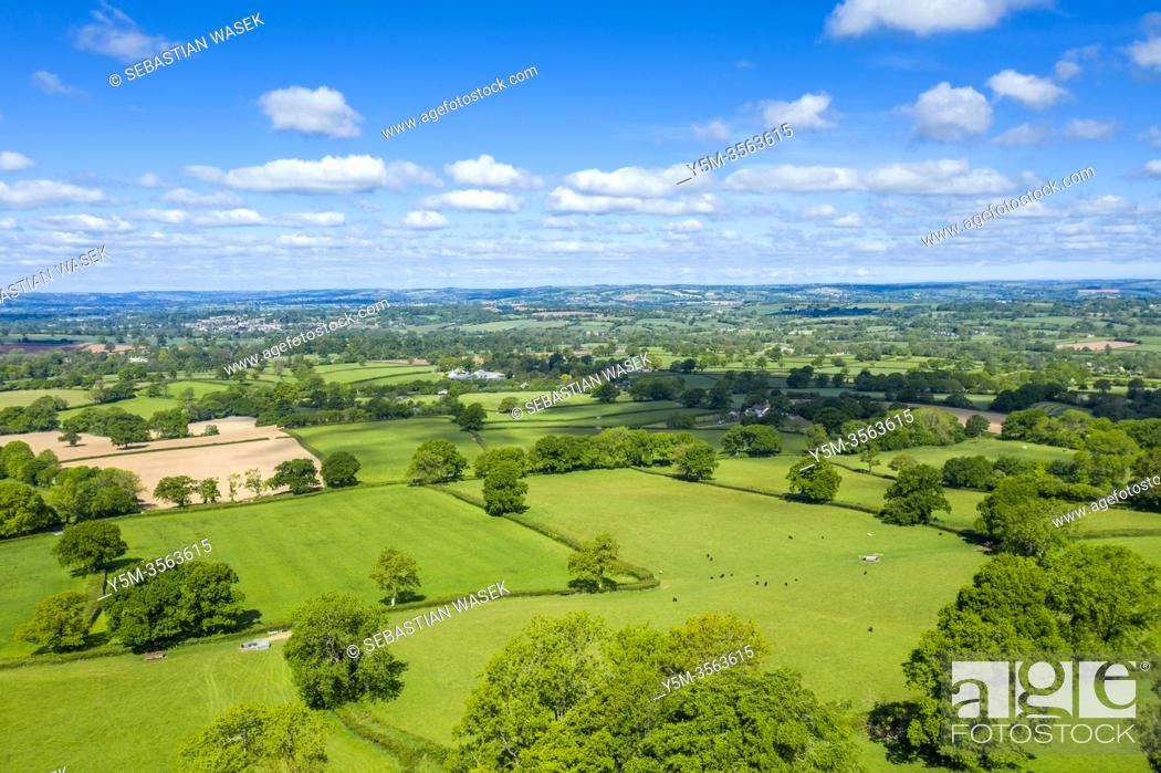 Imagen: Blackdown Hills, Areas of Outstanding Natural Beauty near Craddock, Devon, England, United Kingdom, Europe.