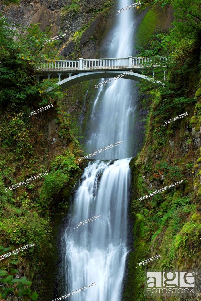 Stock Photo: Multnomah Falls with Benson Bridge, Historic Columbia River Highway, Columbia River Gorge National Scenic Area, Oregon.