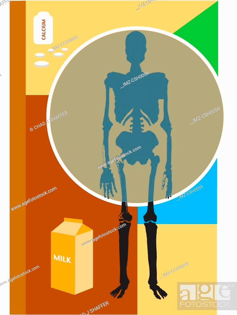 Stock Photo: Osteoporosis can be prevented by milk and calcium consumption.