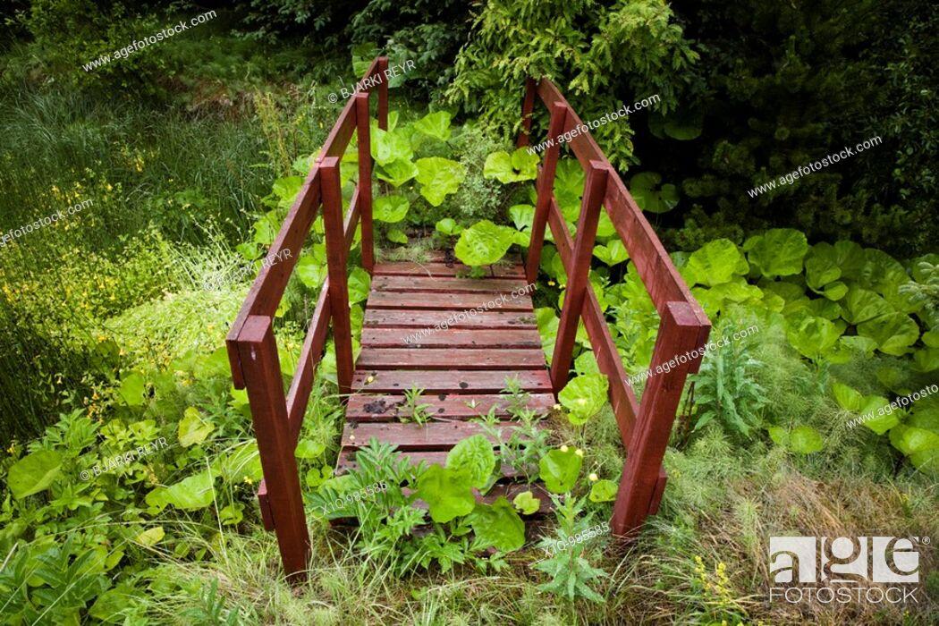 Stock Photo: Old overgrown footbridge  Iceland.