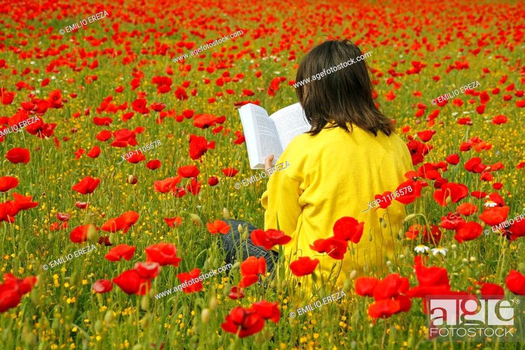 Stock Photo: Reading a book in a poppies field.