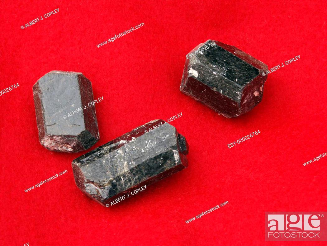 Stock Photo: Tourmaline crystals.