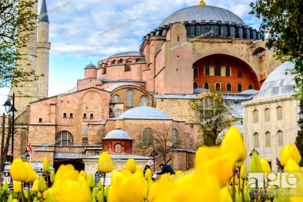 Imagen: Traditional tulip Festival in Sultanahmet Square with view of Hagia Sophia,Greek orthodox Christian patriarchal basilica (church) on background and colorful.