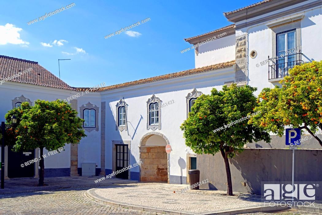 Stock Photo: Administrative building, orange trees, Faro Portugal,.