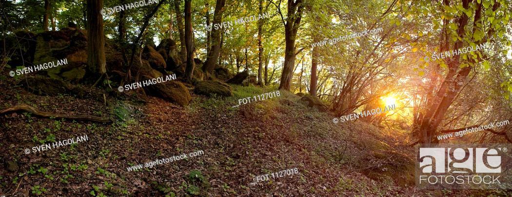 Stock Photo: Giant's Grave Huenengrab in Hessen, Germany.