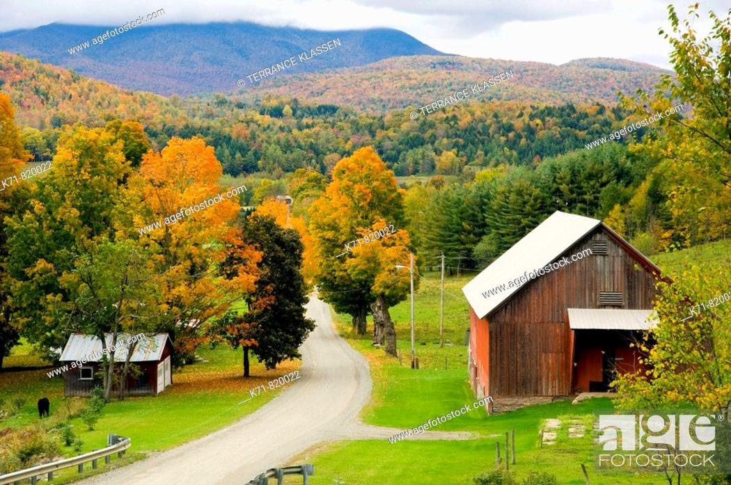 Stock Photo: Fall foilage and a farm in rural, Vermont, USA.
