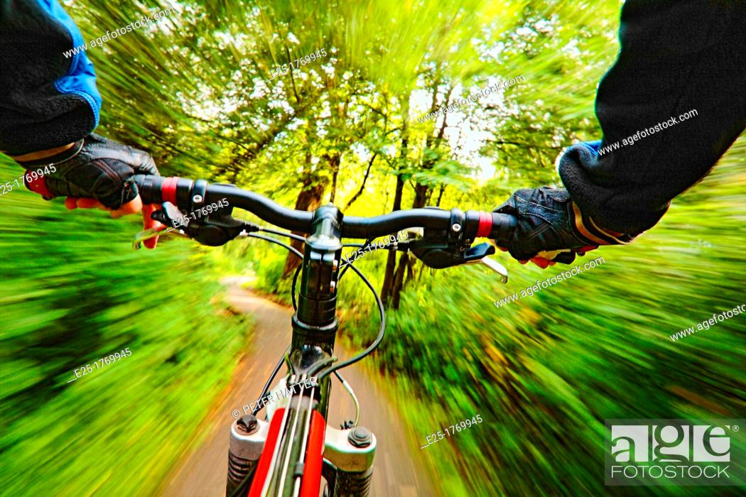 Stock Photo: Cyclist riding along a forest path.