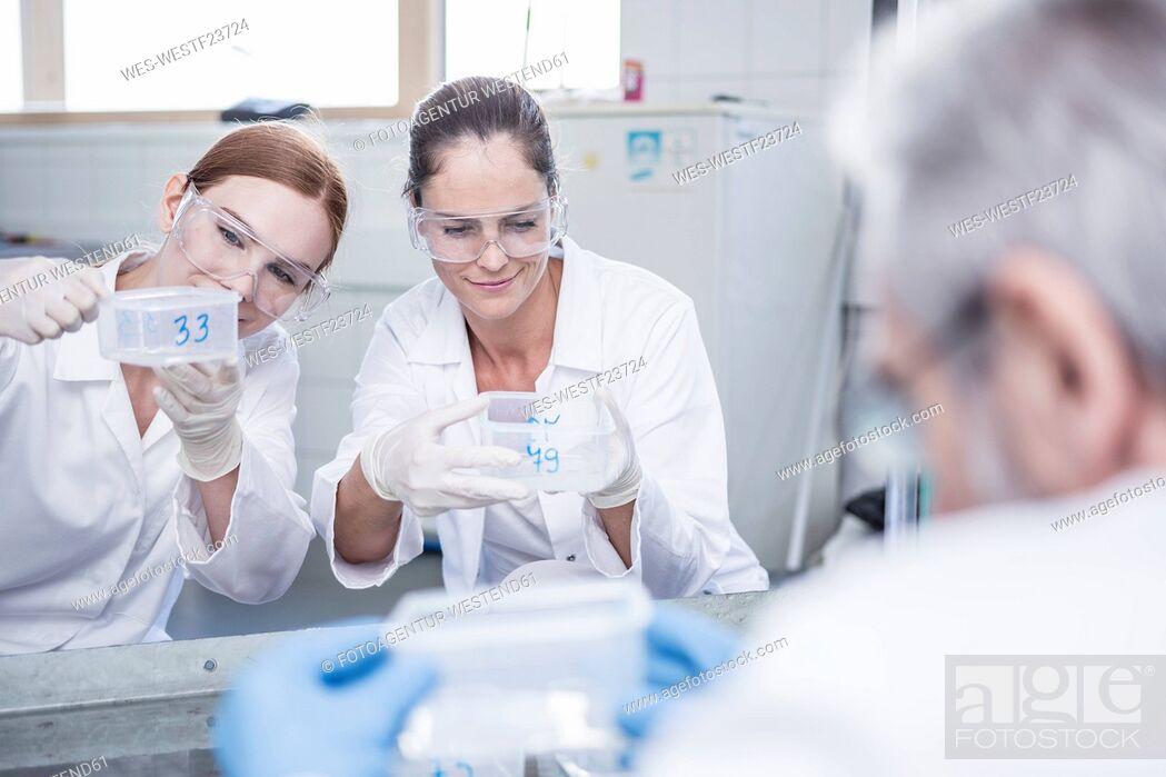 Imagen: Scientists working together in rain lab.