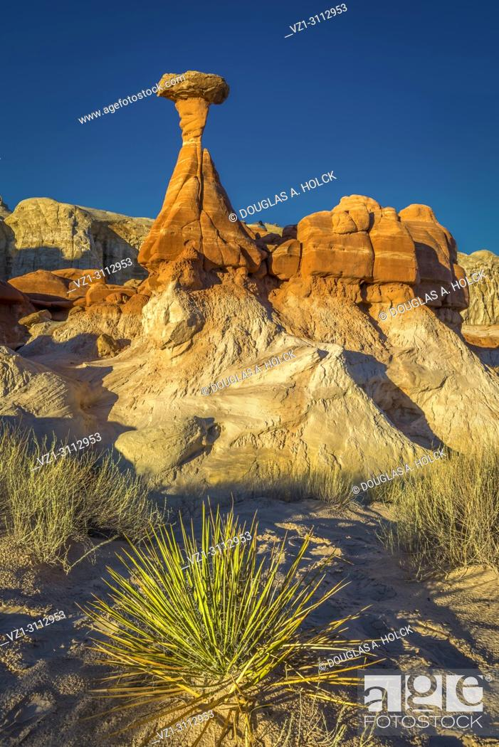 Stock Photo: Desert bush anchors the scene of the iconic toadstool hoodoo in Paria Rimrocks Toadstool Hoodoos, Grand Staircase-Escalante National Monument, Utah, USA.