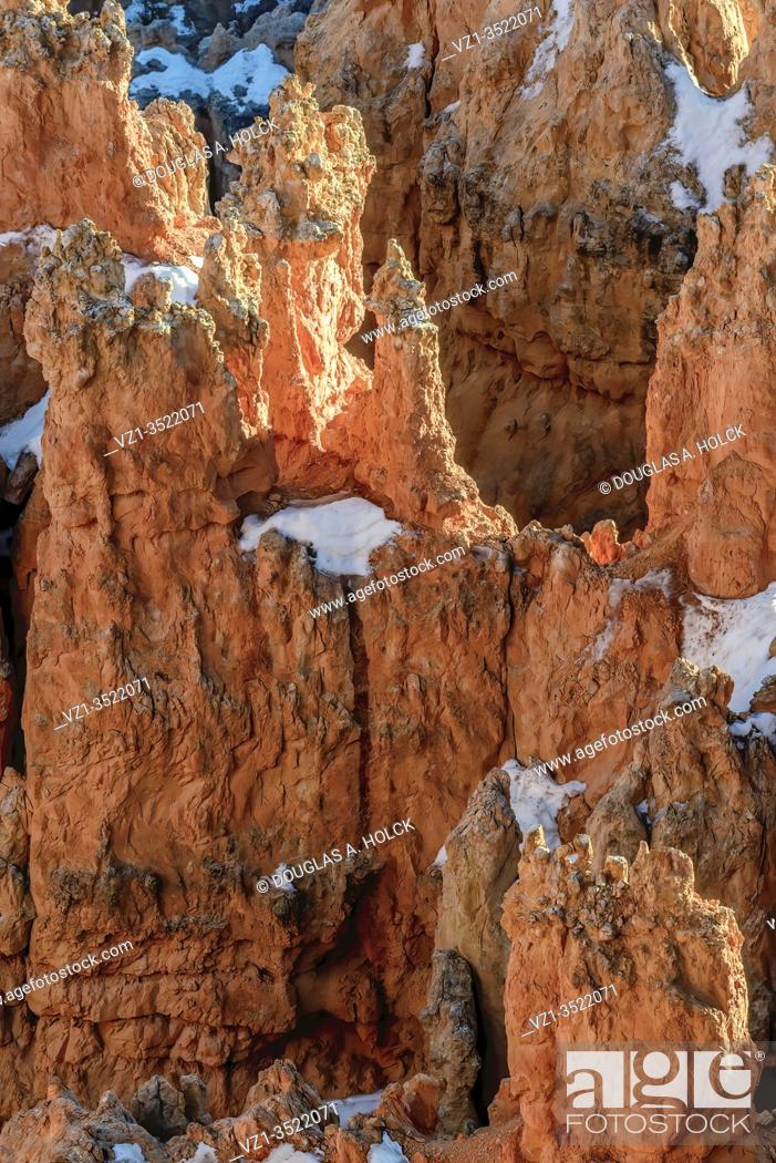 Imagen: Late Afternoon Light on Hoodoo in Bryce Canyon National Park UT USA World Location.