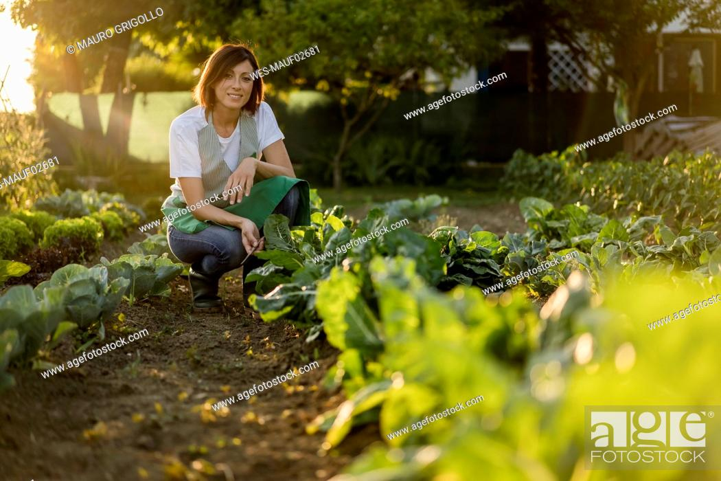 Stock Photo: Woman working in her vegetable garden.