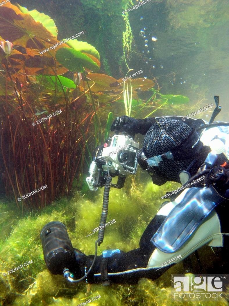 Stock Photo: Unterwasserfotograf im Kulkwitzer See.