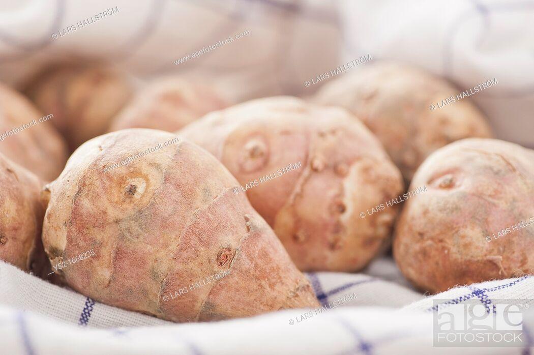 Stock Photo: Closeup of raw Jerusalem Artichokes.