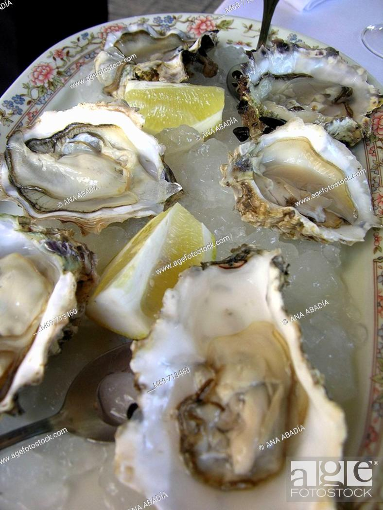 Stock Photo: Oysters.