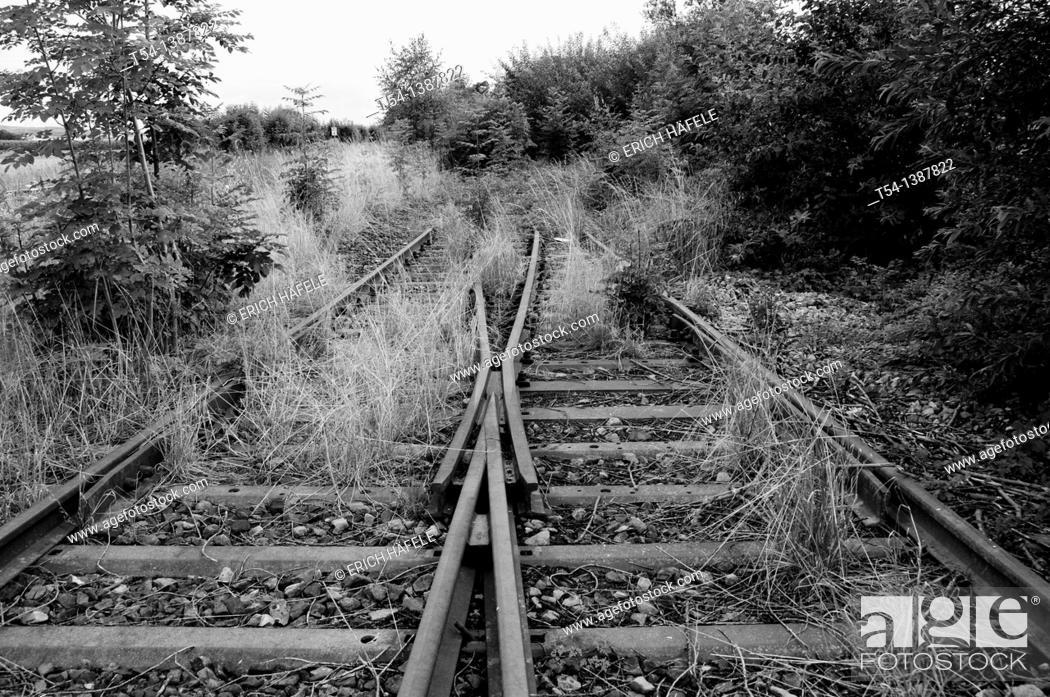 Stock Photo: Ingrown railway points.