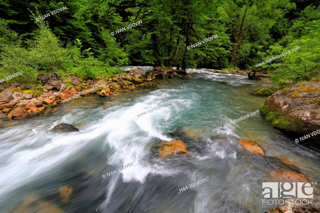 Stock Photo: River in Caucasus mountains, near lake Ritsa, Abkhazia, Georgia.