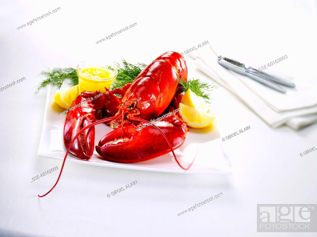 Stock Photo: Cooked lobster.