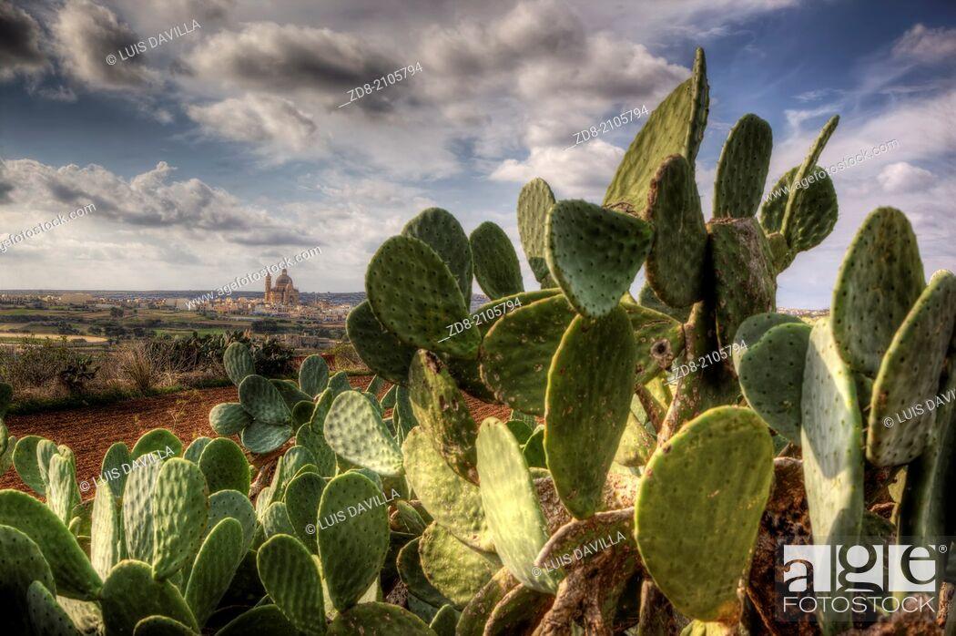 Imagen: xewkija in gozo island. malta.