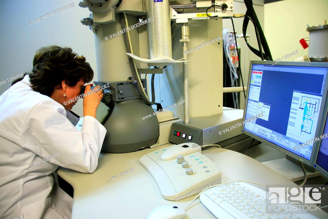 Stock Photo: Working with the electron microscope in a laboratory.