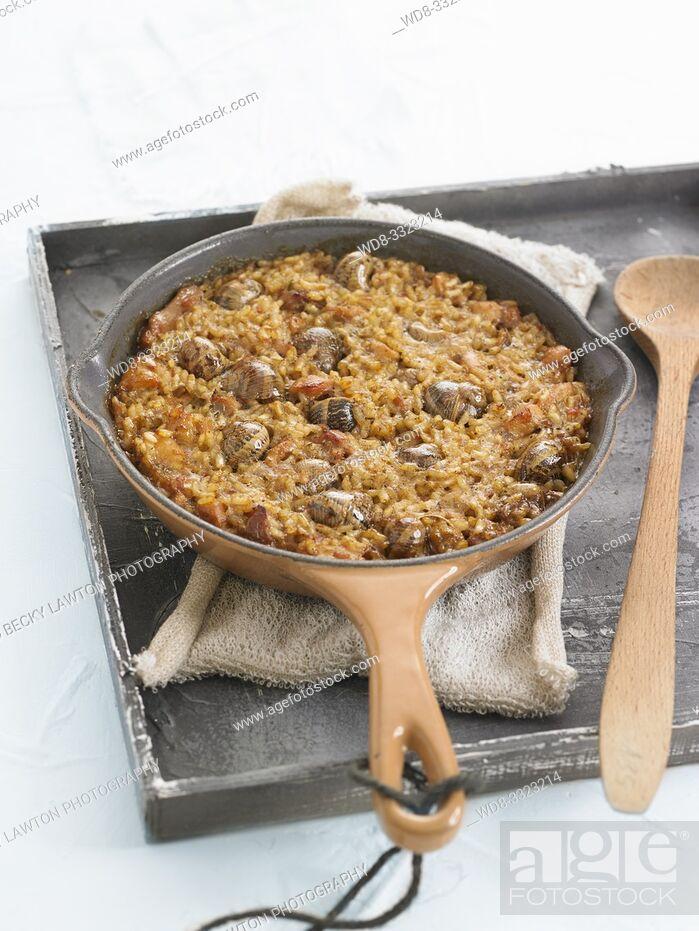 Stock Photo: arroz al horno con conejo y caracoles.