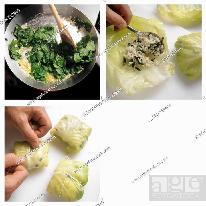 Stock Photo: Making cabbage roulade with rice and spinach filling.