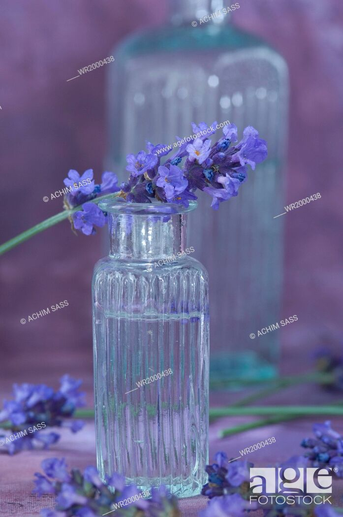 Stock Photo: lavender water.