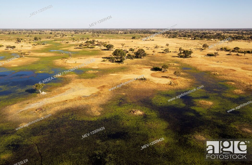Stock Photo: Freshwater marshes with streams, channels and islands - aerial view - Okavango Delta, Moremi Game Reserve, Botswana.