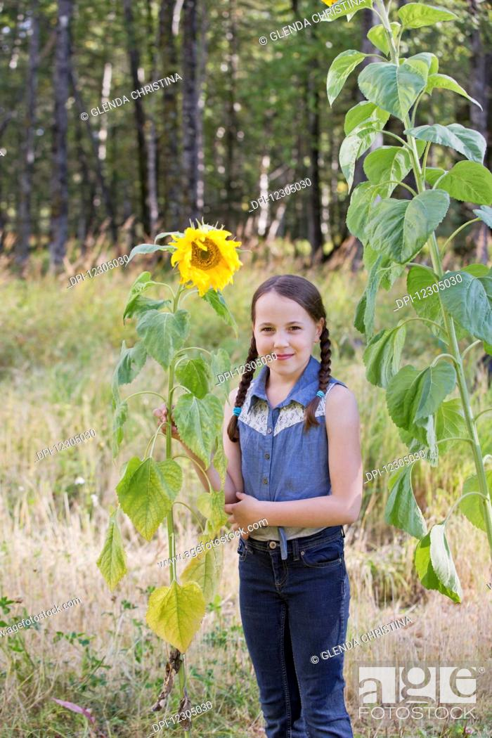 Stock Photo: Tween girl standing by a sunflower in summer in a field in Palmer Alaska.