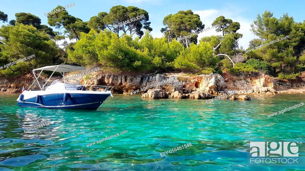 Stock Photo: Landscape in the Sainte Marguerite island, Lerins islands, South of France.