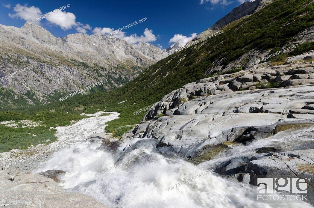 Imagen: Mts Presena-Busazza-Cercen Chain, Genova Valley, stream from Lobbia Glacier, European Larches Forest, Adamello-Brenta Natural Park, the Alps, Trentino, Italy.