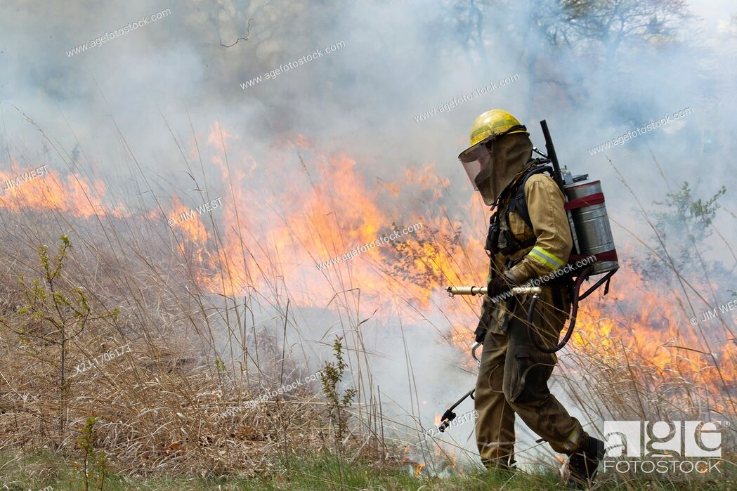 Stock Photo: Detroit, Michigan - Woman wears protective clothing as she helps burn parts of River Rouge Park with the aim of eliminating invasive species  After the fire.