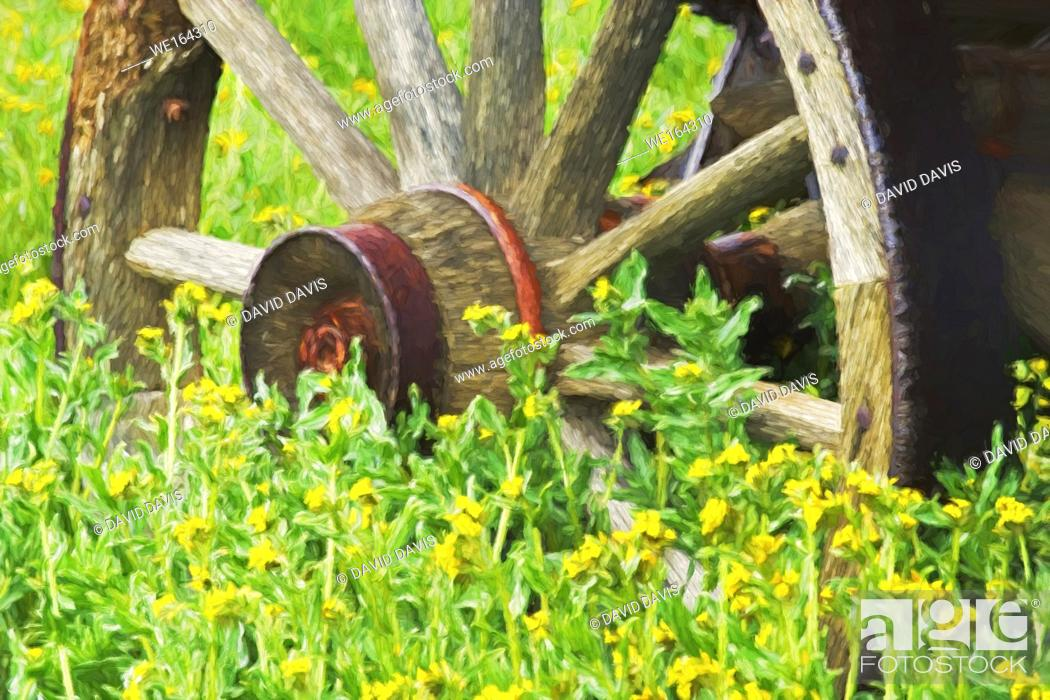 Stock Photo: Impressionist are of wagon wheel and yellow flowers.