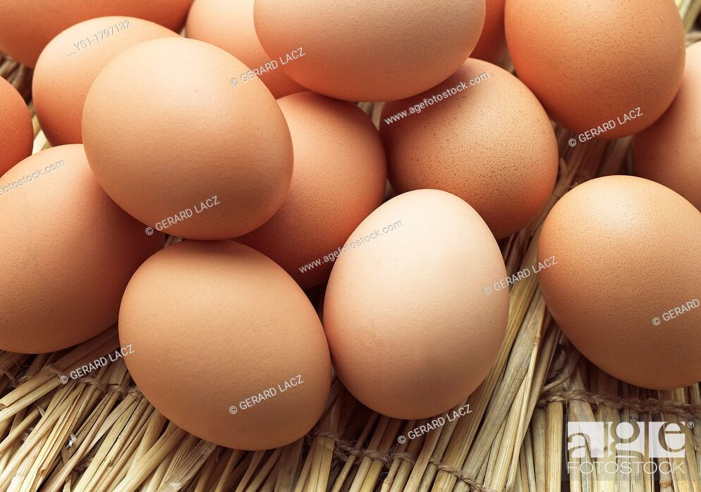 Stock Photo: Chicken Eggs.