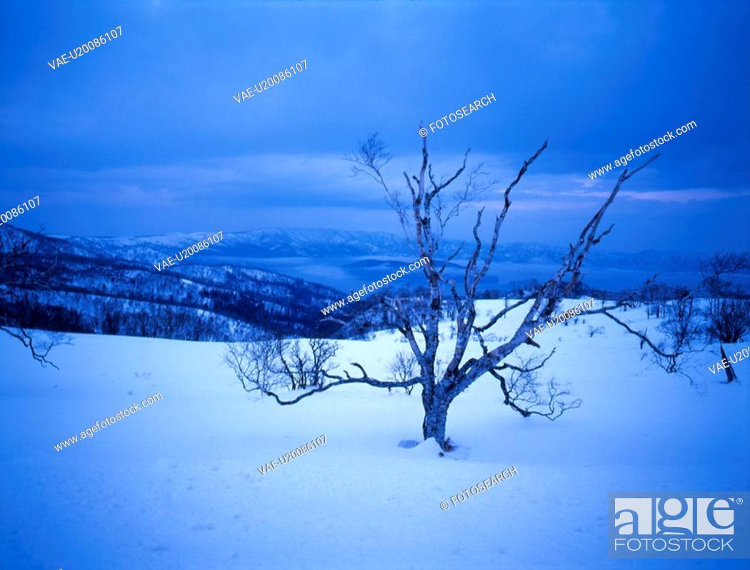 Stock Photo: snow scene, landscape, winter scene, sky, mountain, winter, scenery.