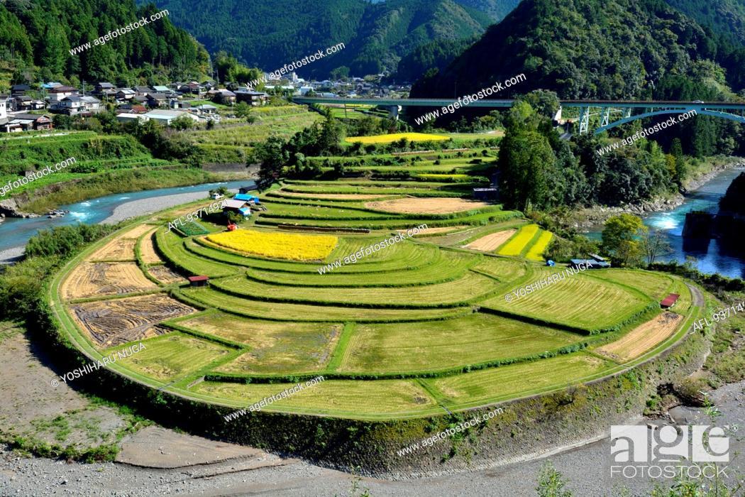 Imagen: Wakayama Prefecture, Japan.