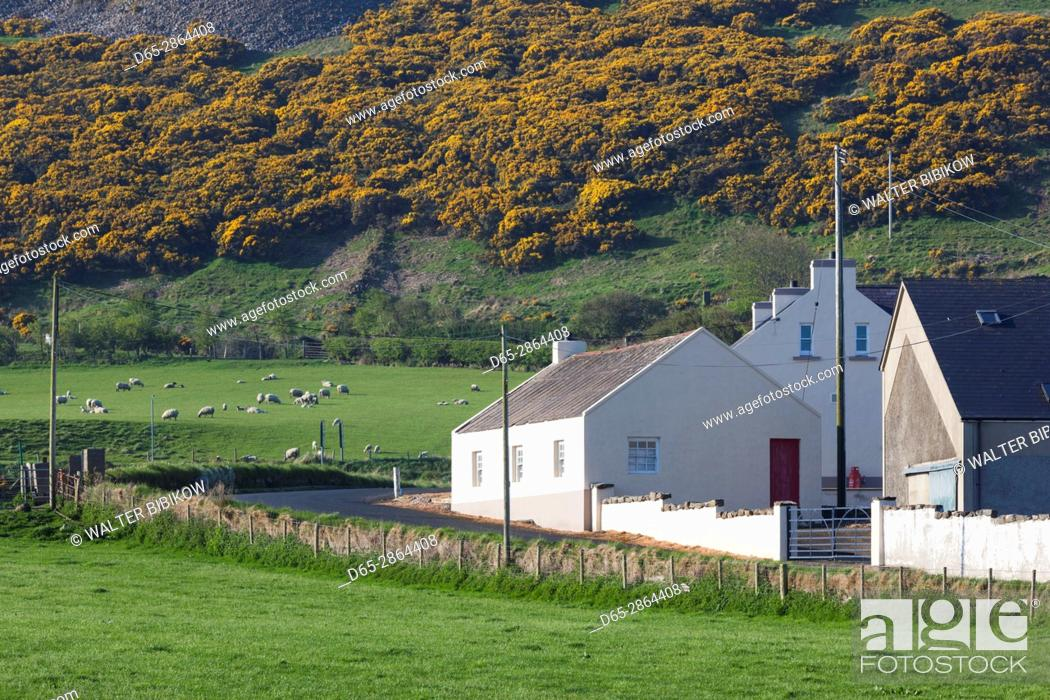 Stock Photo: UK, Northern Ireland, County Antrim, Ballintoy, village house.