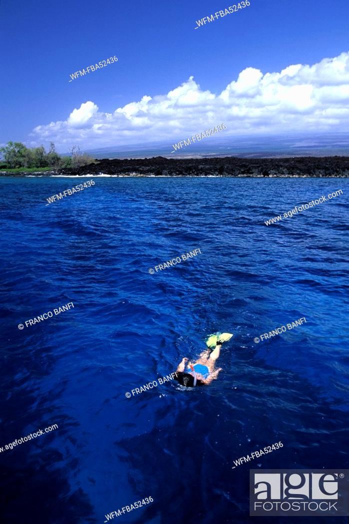 Stock Photo: Snorkeling at Coast of Hawaii, Kona, Big Island, Hawaii, USA.