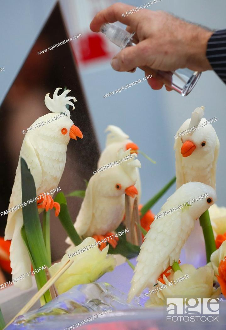 """Stock Photo: 16 February 2020, Baden-Wuerttemberg, Stuttgart: A man at the """"""""Culinary Olympics"""""""" in a hall of the fair sprays water on parrots carved from kohlrabi and sweet."""