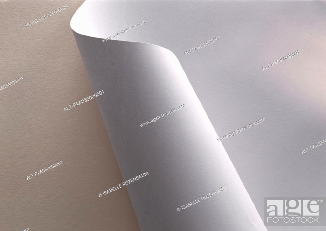 Stock Photo: White paper, partially rolled up, extreme close-up.