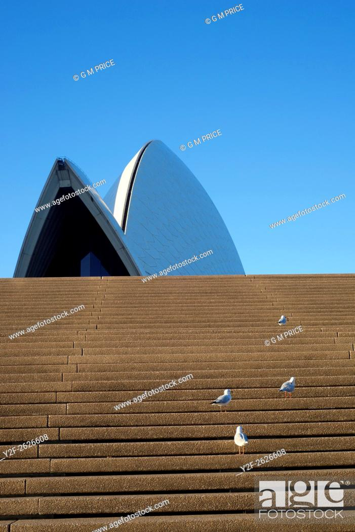 Stock Photo: seagulls on Sydney Opera House steps and roof shapes.