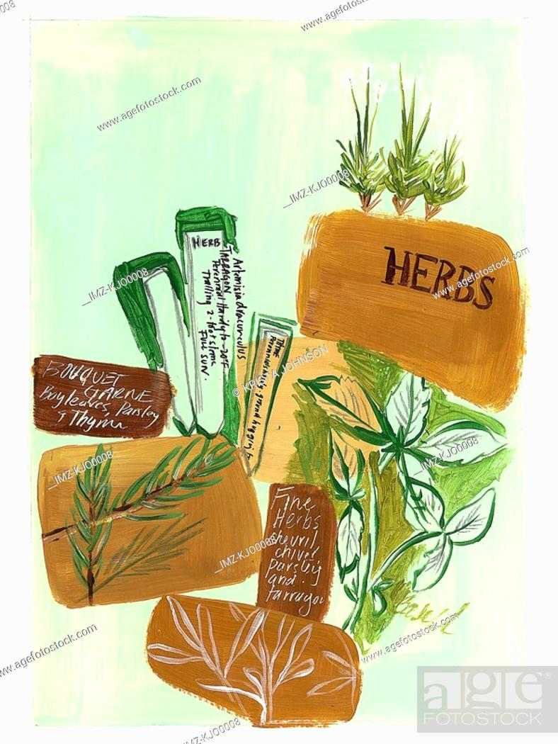 Stock Photo: herbs and spices.