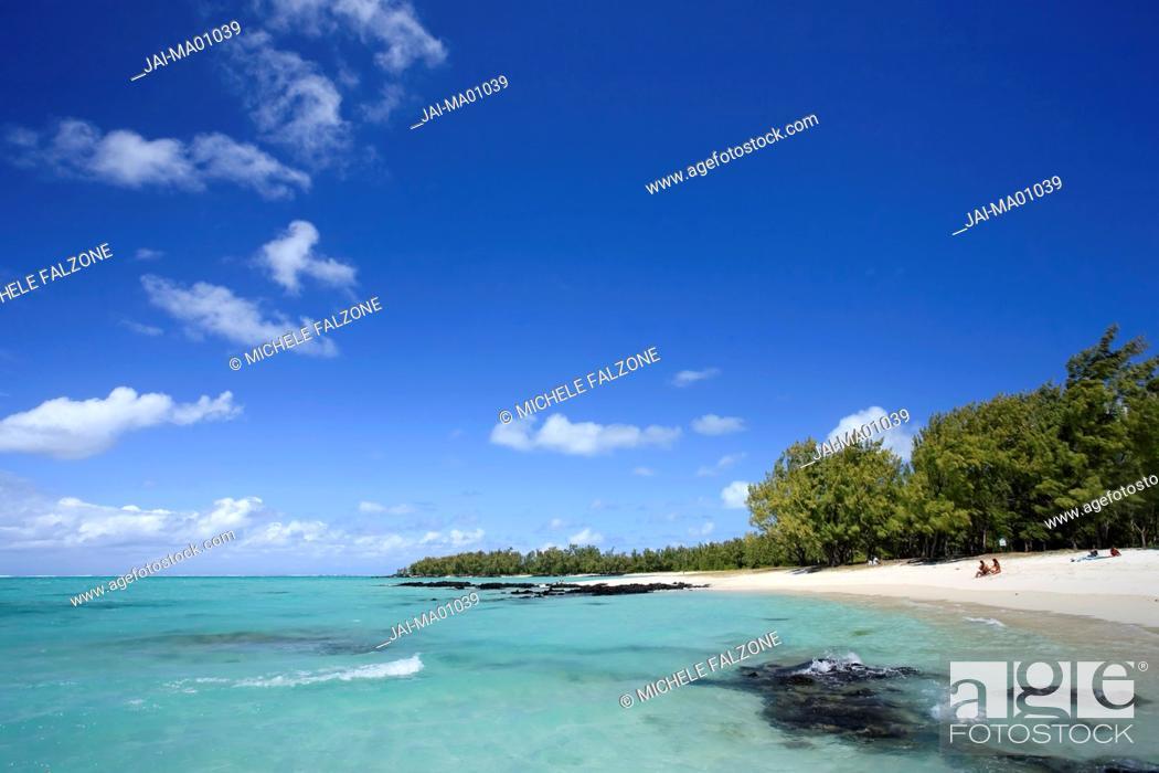 Stock Photo: Beach and Casuarina Trees, Ile aux Cerfs, Mauritius, Indian Ocean.
