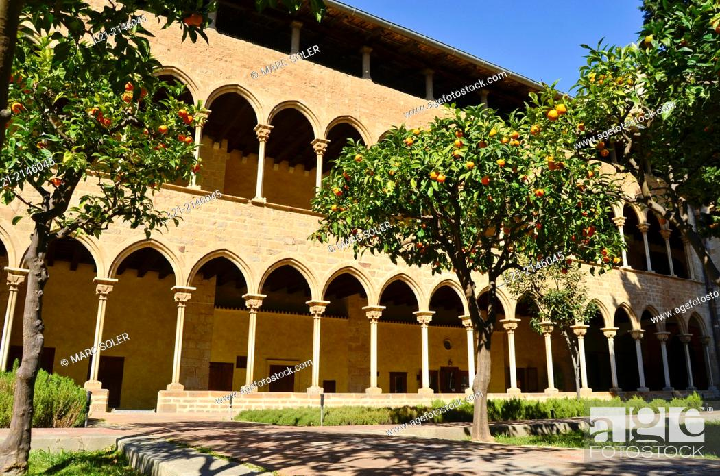 Stock Photo: Pedralbes Monastery cloister. Gothic style, 14th century. Barcelona, Catalonia, Spain, Europe.